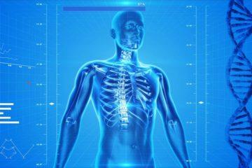 squelette symbolisant la médecine complémentaire