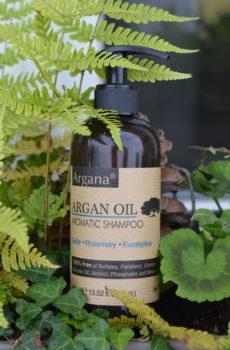 Shampoing à l'huile argan bio Accueil des sens Maryse Brunet